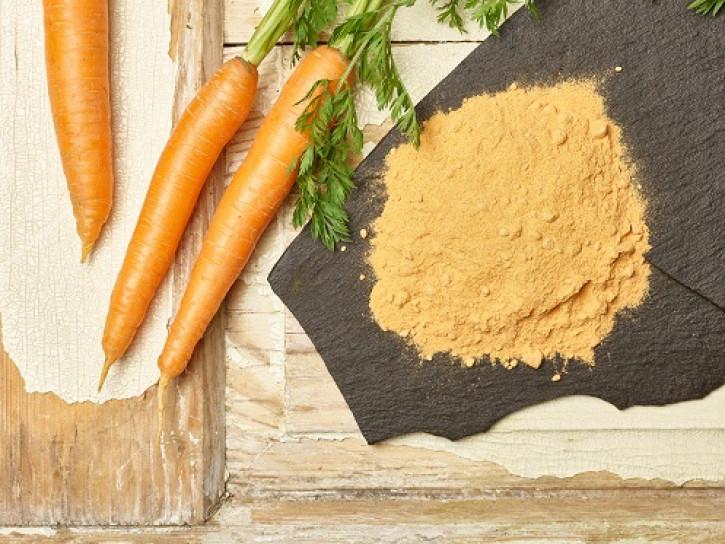 Karottenpulver 25 Kg
