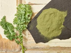 Kale / Grünkohlpulver 100% rein 25 Kg